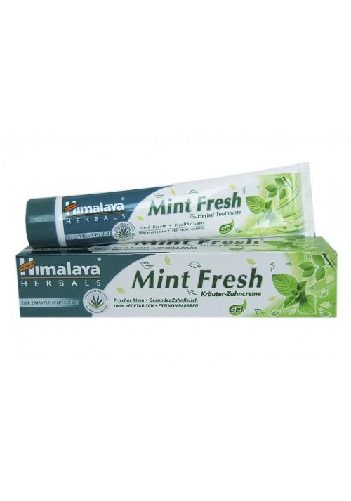 Mint Fresh   Zahnfleischexperte
